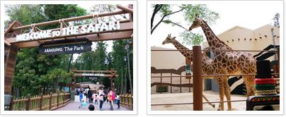 동물원 사진