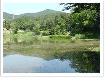 구덕 제2저수지 풍경 사진